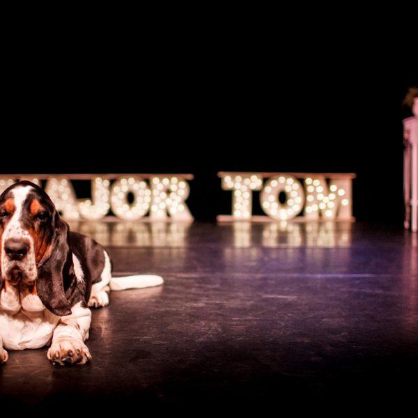 "Major Tom the basset hound dog ""performing"" on stage"